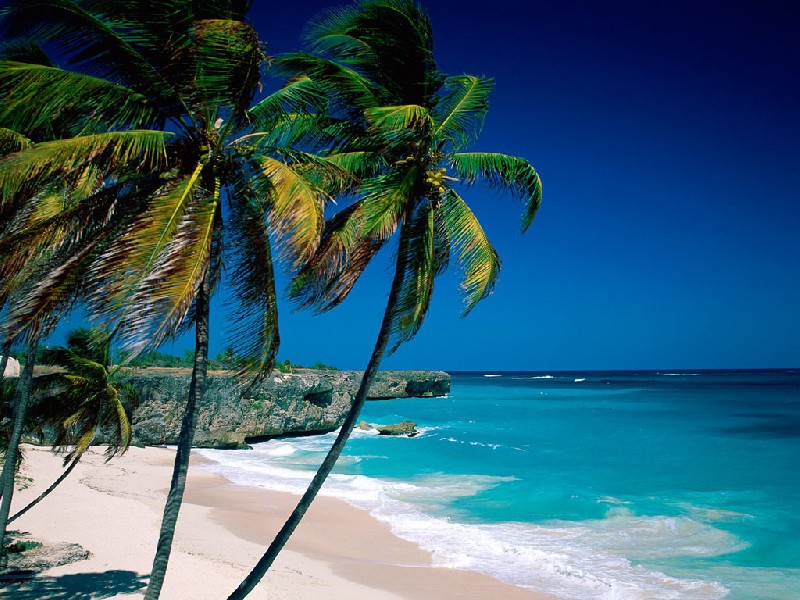Екскурзия до Карибите - Круиз - Самолетни билети - Via Tours